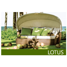 Furniture Collection:  Lotus